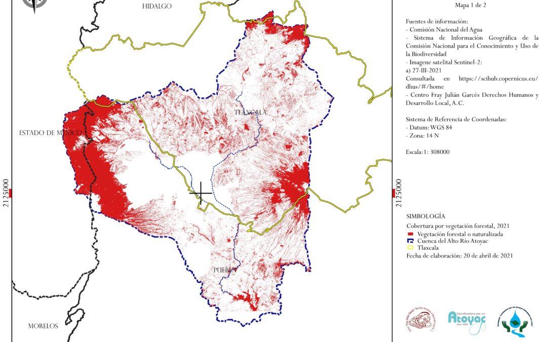 Comunicado. Día de la Tierra: grave pérdida de superficie forestal en Tlaxcala
